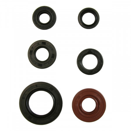 Engine Oil Seal Kit - Tusk 1339140002