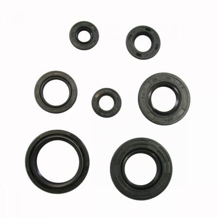 Engine Oil Seal Kit - Tusk 1339140009
