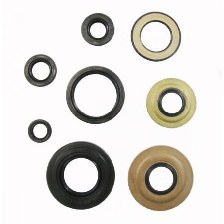 Engine Oil Seal Kit - Tusk 1339140012
