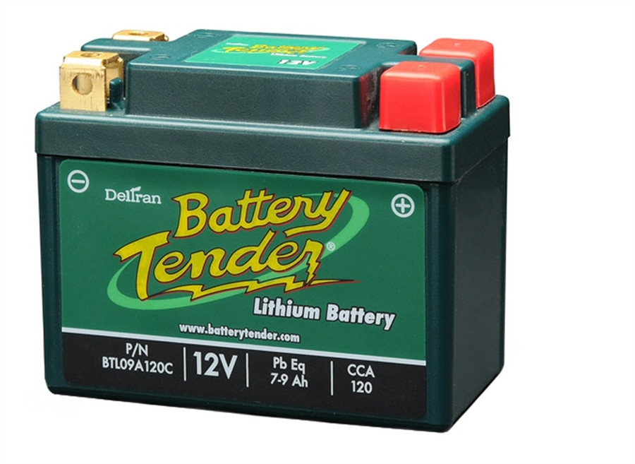 Deltran Btl09a120c Lithium Iron Phosphate Battery